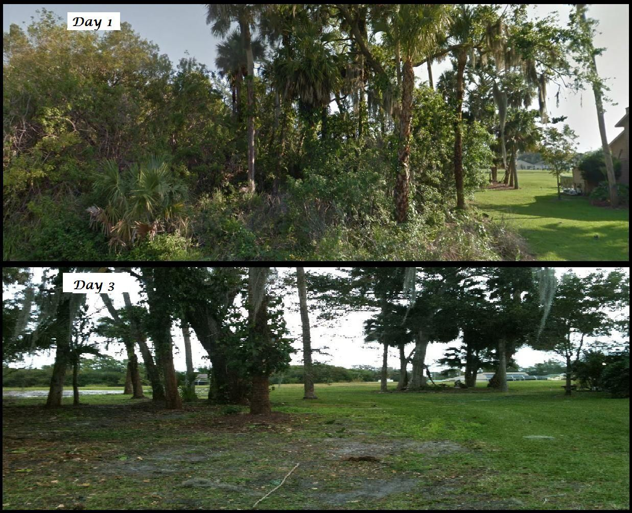 An Example Of Our Brush Clearing Showing A 1 4 Acre Lot In Port Saint Lucie On The Day Of Commencem Landscape Services Landscaping Company Desert Landscaping