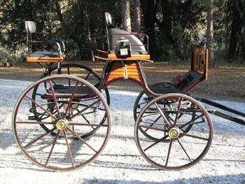 Carriage Driving Essentials Carriage Driving Dressage Equestrian