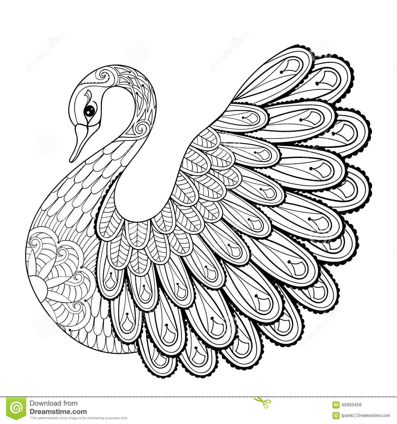 Hand Drawing Artistic Swan For Adult Coloring Pages In Doodle Stock Vector