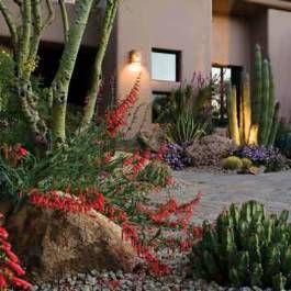 southwestern living - desert gardens