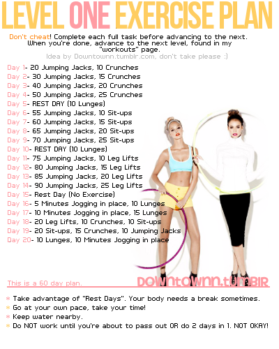 Level 1, Exercise 20 Day Plan