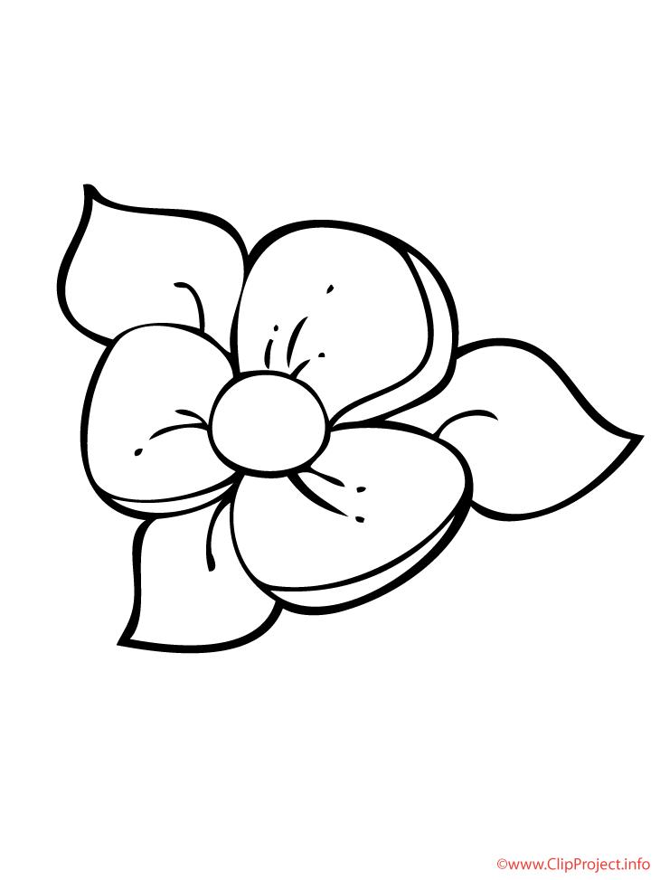 Blume Window Color Vorlage Malvorlagen blumen