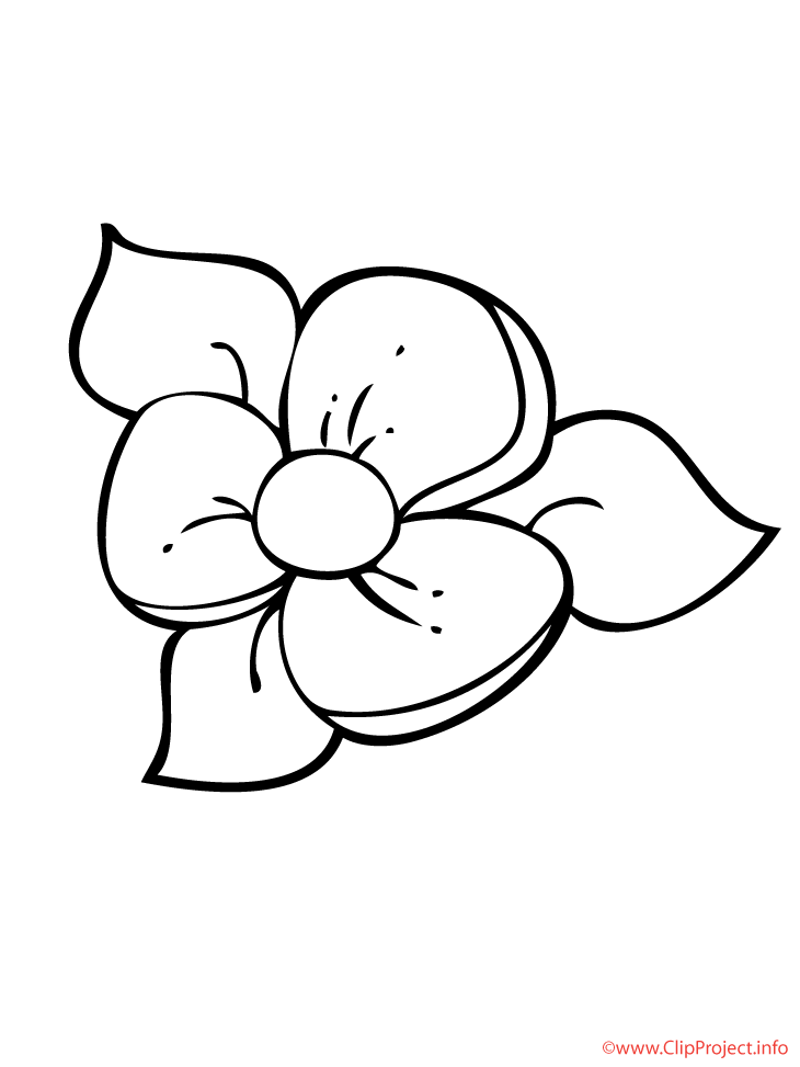 Blume Window Color Vorlage