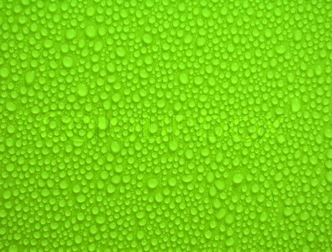 Backgrounds For Green Background Images For Websites Hd Green Backgrounds Background Images For Websites Background Images