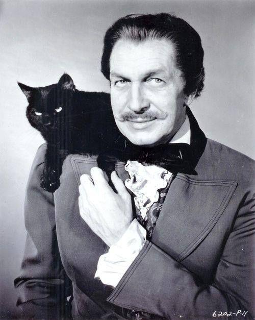 Famous Cat LoversActors, Actresses, Movie Celebrities