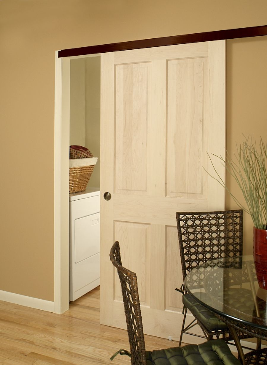 Pocket door, perhaps easier to install on the outside of the wall ...