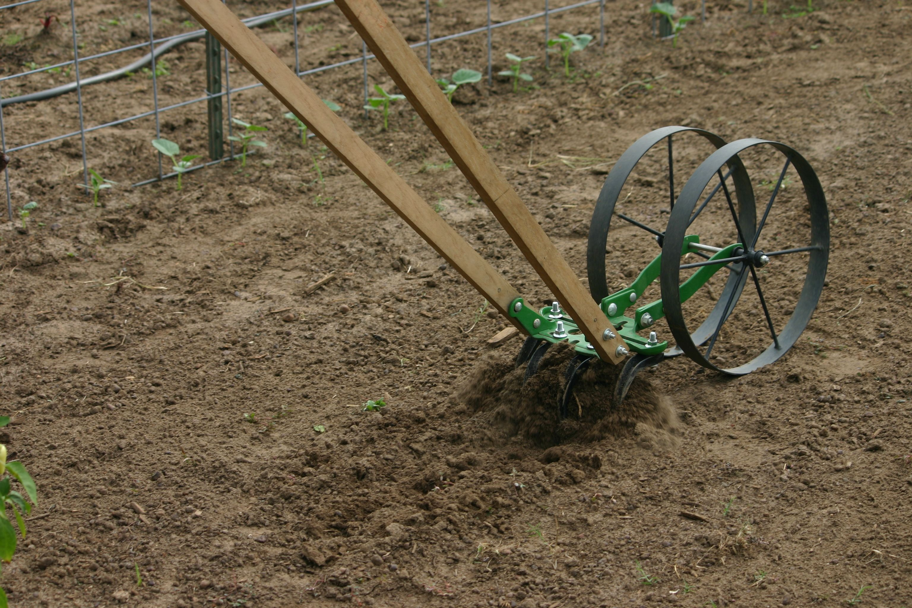 Double Wheel Hoe Hoss Tools Save Time Energy In The Garden Fall Crop Garden Garden Tools