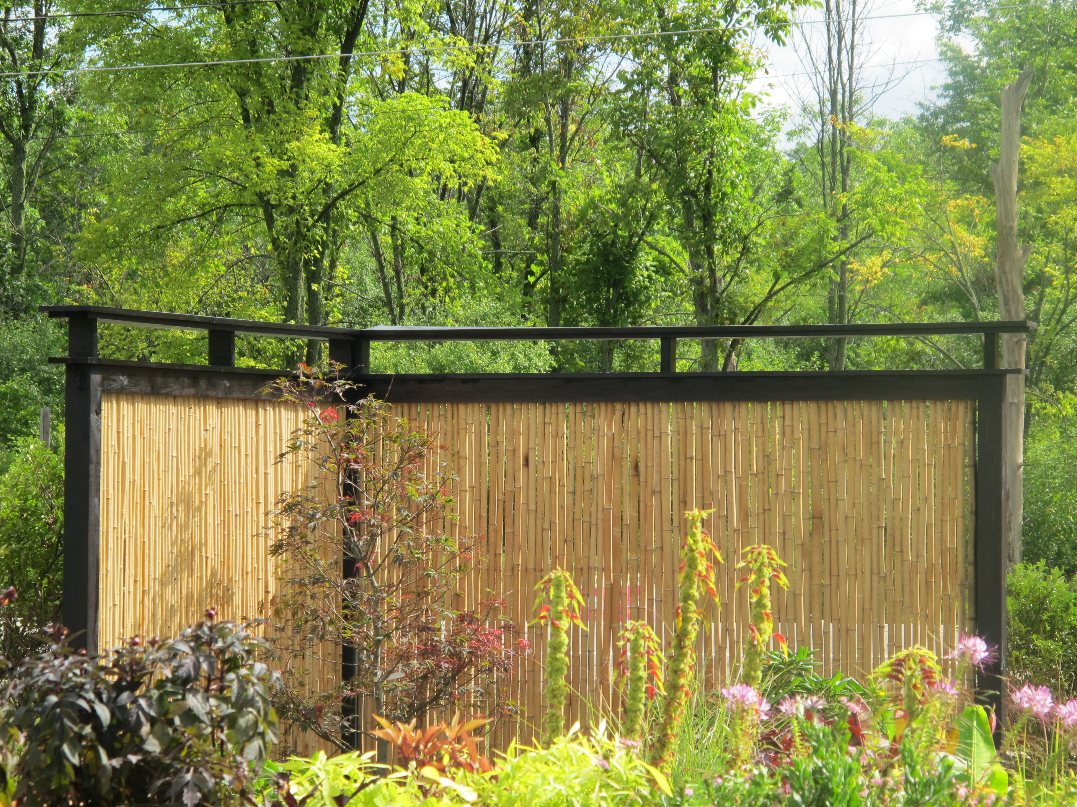 Outdoor, Stylish Creative Bamboo Privacy Fence Ideas For Backyard Garden  Decoration ~ Aesthetic Bamboo Fencing Ideas For Yard Parting And Decor