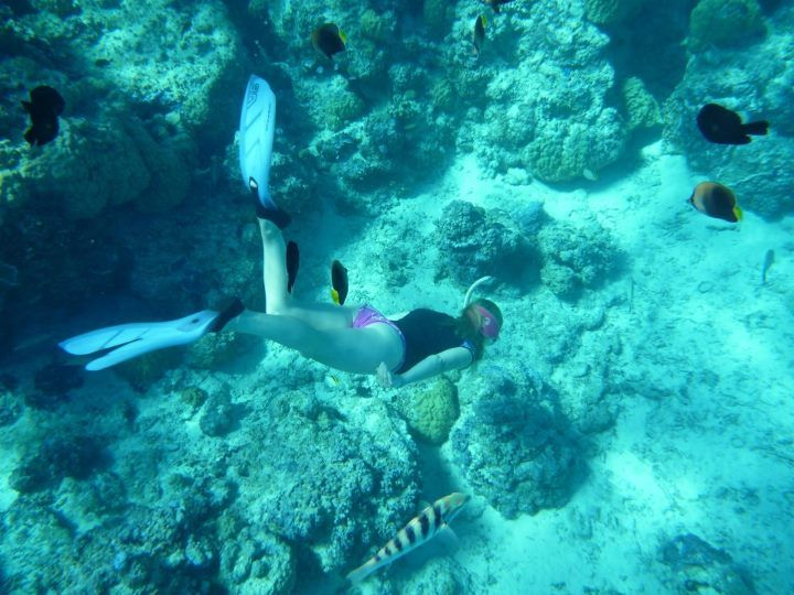 Danielle has recently became a PADI Instructor She has quit her job - marine biologist job description
