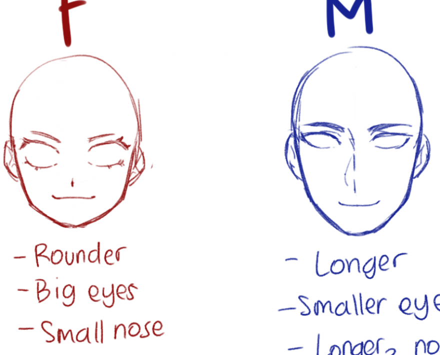 Simple Anime Anatomy For Female And Male In 2020 Simple Anime Big Eyes Small Nose