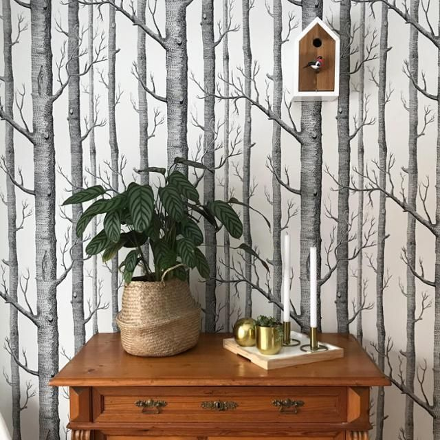 Ein Klassiker Die Baumtapete lieben wir sehr! #wallpaper #tapete - retro tapete wohnzimmer