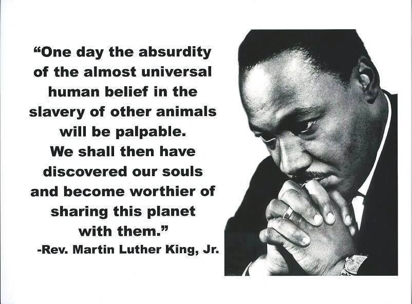 One Day The Absurdity Of The Almost Universal Human Belief In The Slavery Of Other Ani Happy Martin Luther King Day Martin Luther King Martin Luther King Quote