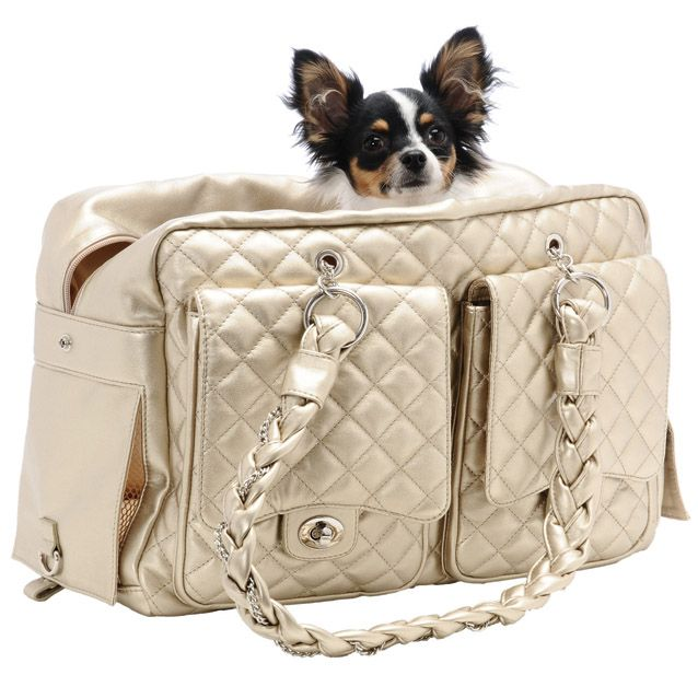 Alex Luxe Dog Carrier Bag By Kwigy Bo Gold Designer Pet Carriers