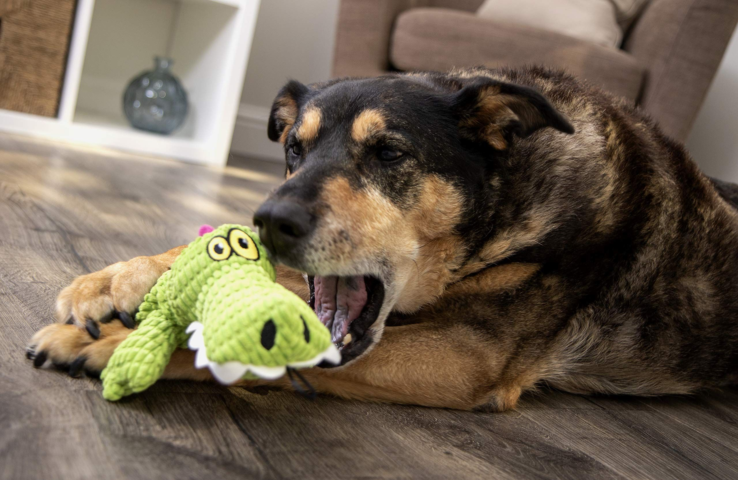 Trustypup Gator Plush Dog Toy With Silent Squeaker Green You