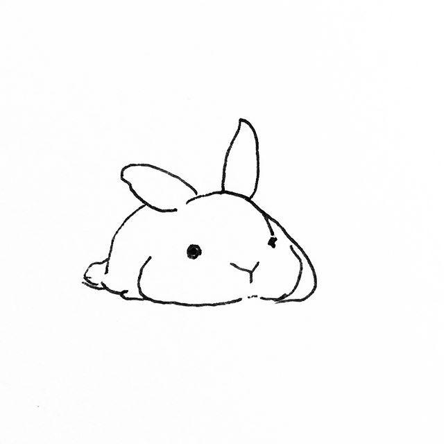 """Photo of Buns By Mari on Instagram: """"? ?  #bunsbymari  #bunny #rabbit #usagi #lapin #rabbitlover #instabunn #fabbunnies #rabitsofig #bunniesofinstagram #bunnies #dailyfluff…"""""""