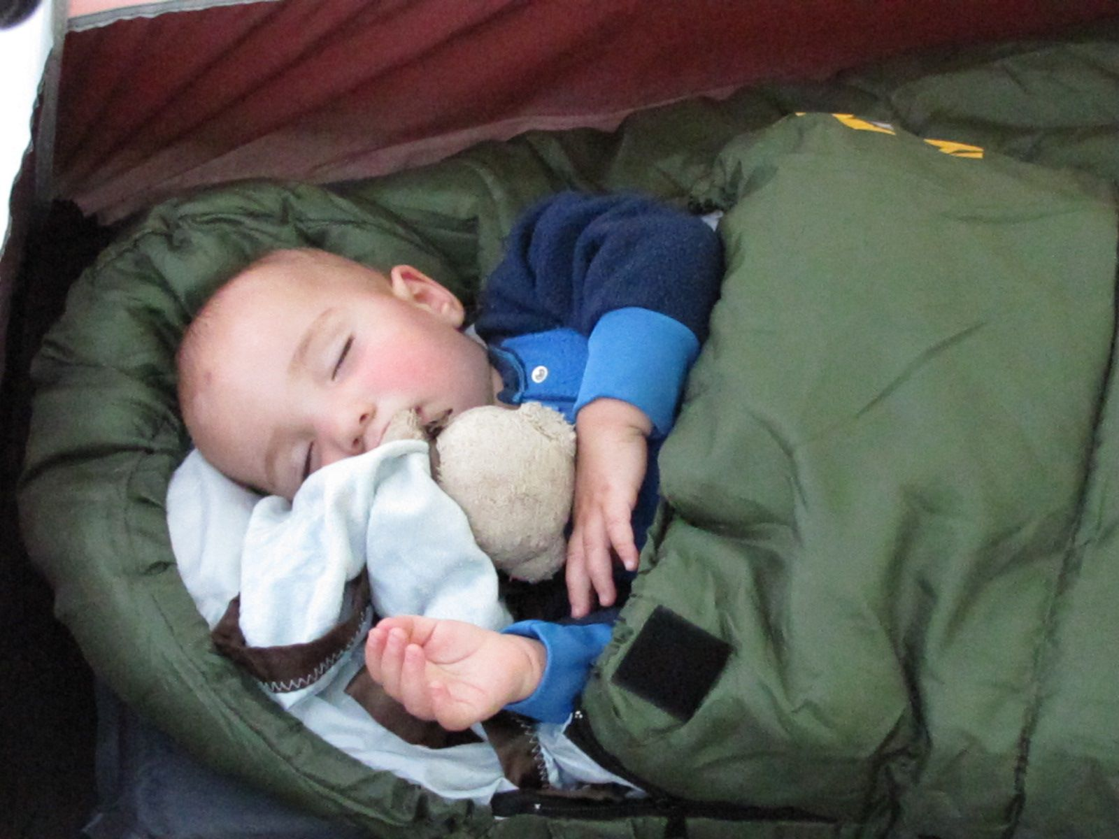 Toddler Sleeping Bag Ideas for Rob Pinterest