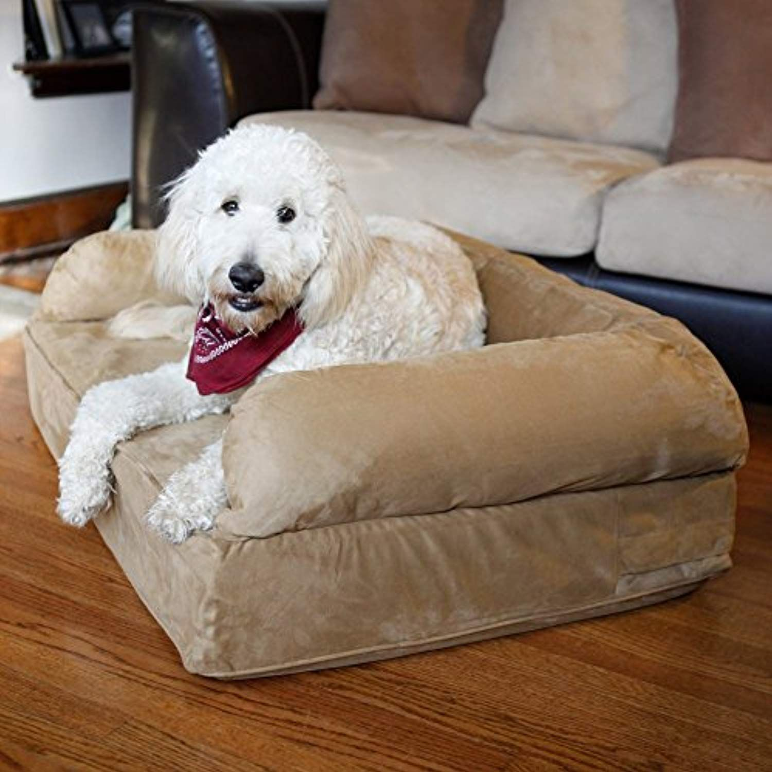Snoozer Luxury Dog Sofa With Memory Foam Read More Reviews Of The Product By Visiting Link On Image This Is An Affiliate Dogbeds
