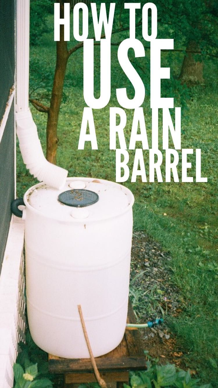 how to keep water fresh in rain barrel