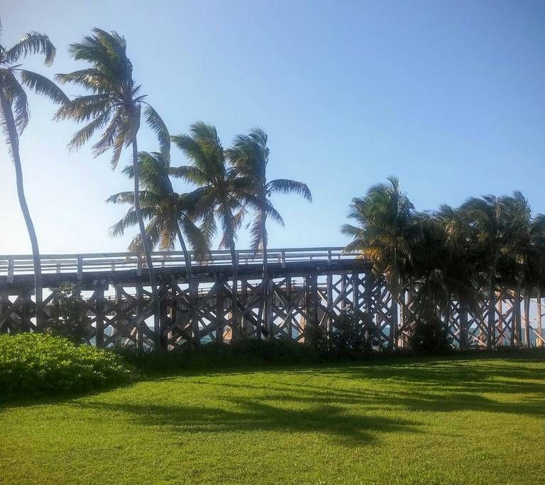 Pidgeon Key historic bridge. Worth the $12 for the boat ride there and back and tour of the island and museum.
