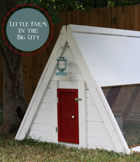 Sweet little coop. Free plans at Ana-White.com