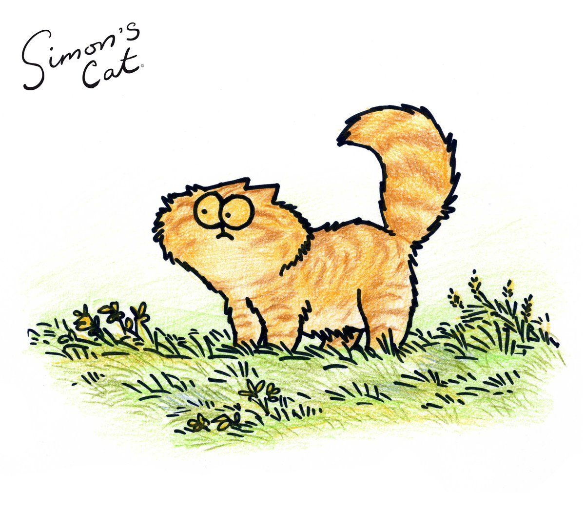 14) Twitter | Needful things | Cats, Simons cat, Animals