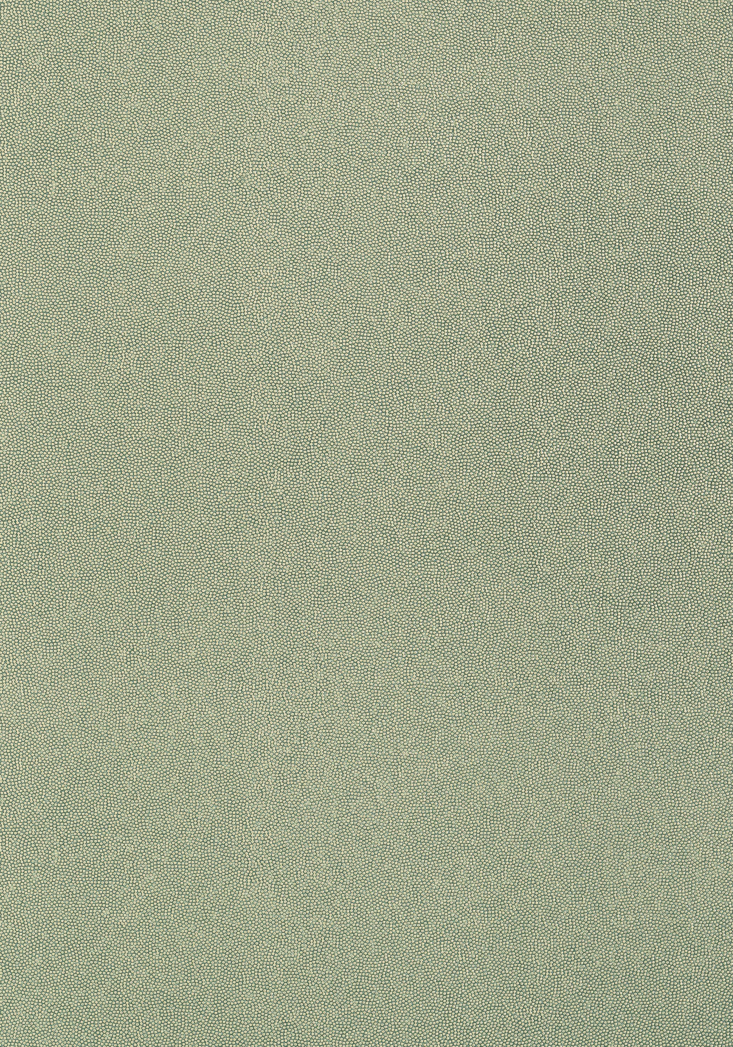 T14151