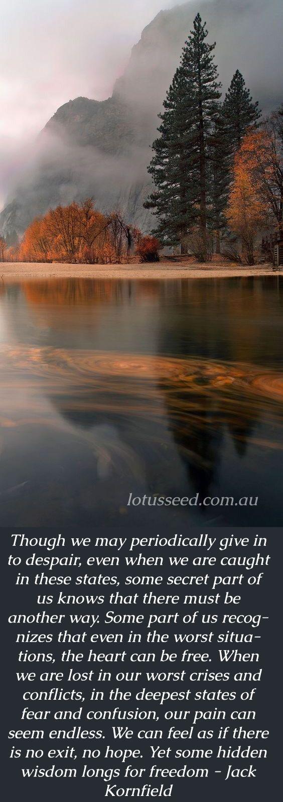 Buddhist Zen Quotes By Lotusseed Peaceful Pinterest Zen