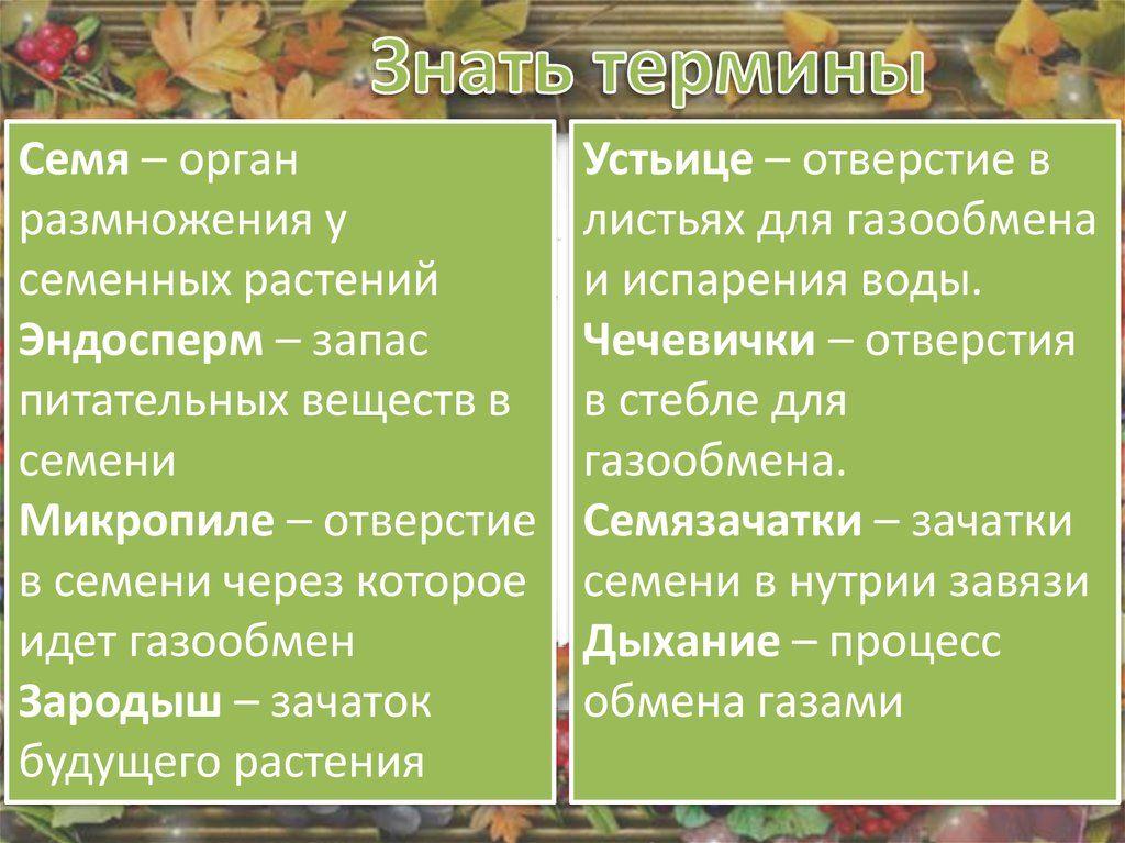 атлас по истории беларуси 10 класс