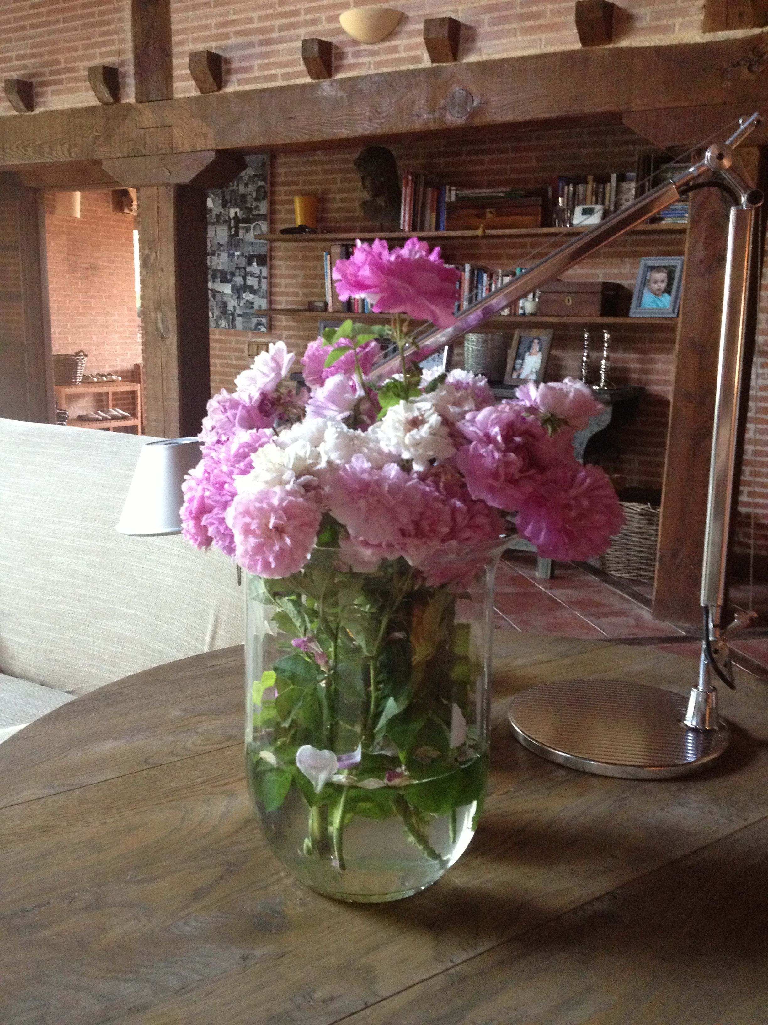 Así están mis flores....