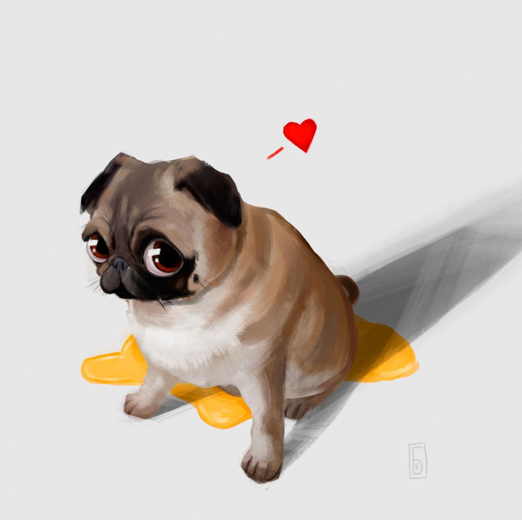 Bff S Baby Pugs Pugs Cute Pugs