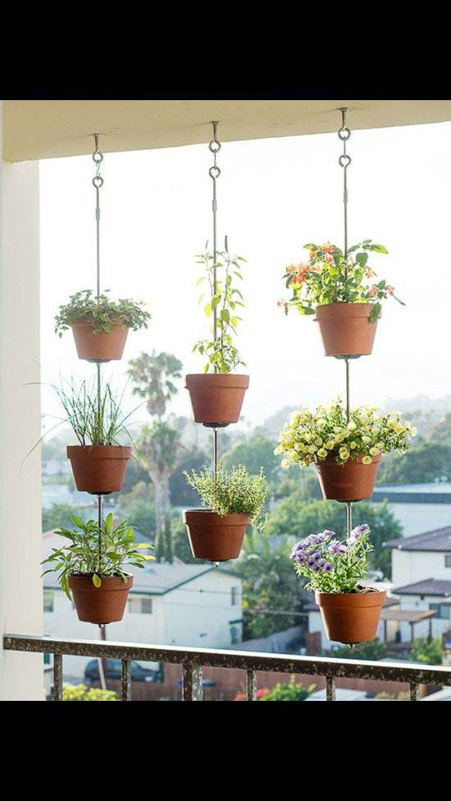Hanging Flowers Small Space Gardening Vertical Garden Indoor Garden