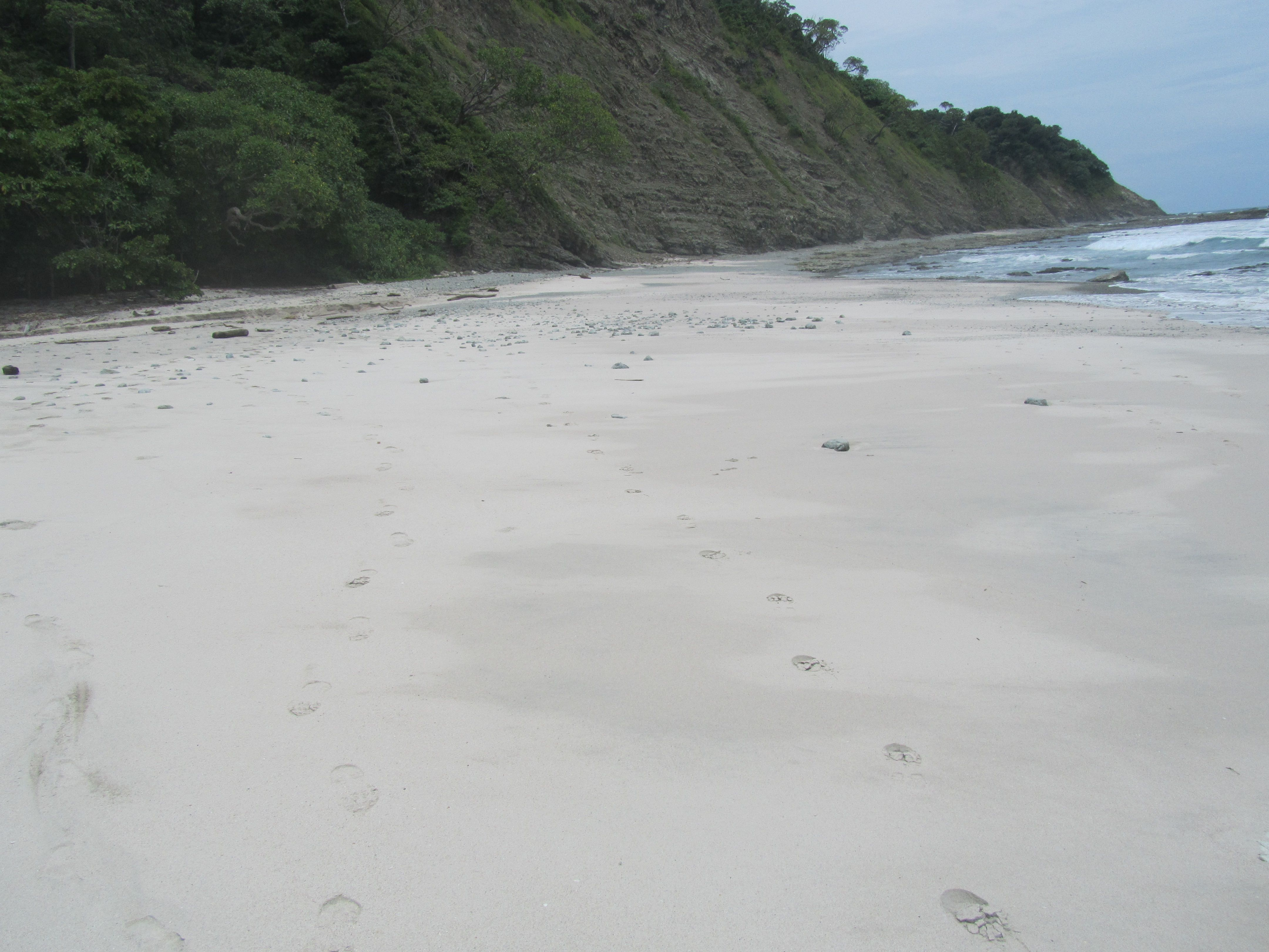 beach Costa Rica near Hotel Costa Rica Samara Paraiso del Cocodrilo
