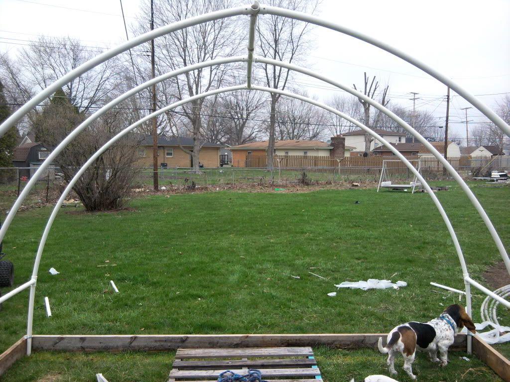 pvc greenhouse - Diy Pvc Greenhouse Plans