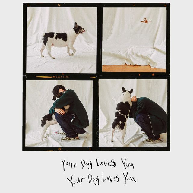 Your Dog Loves You (feat. Crush), a song by Colde, Crush
