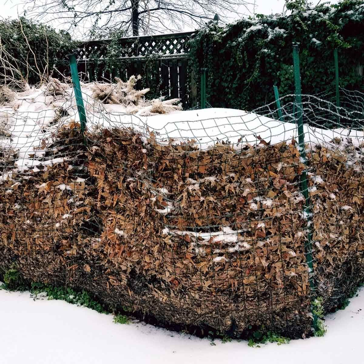 Composting 101 What Is Compost: The Backyard & Garden