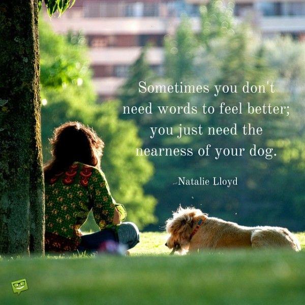 """""""Manchmal brauchst du keine Worte um dich besser zu fühlen, sondern nur die Nähe deines Hundes."""" (Natalie Lloyd)"""