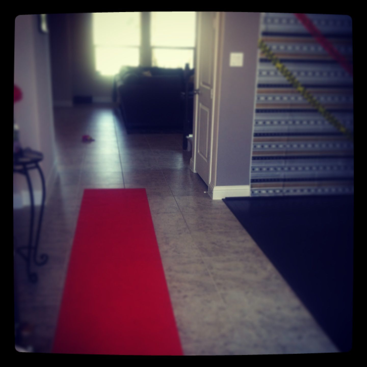 DIY step and repeat & red carpet from party city