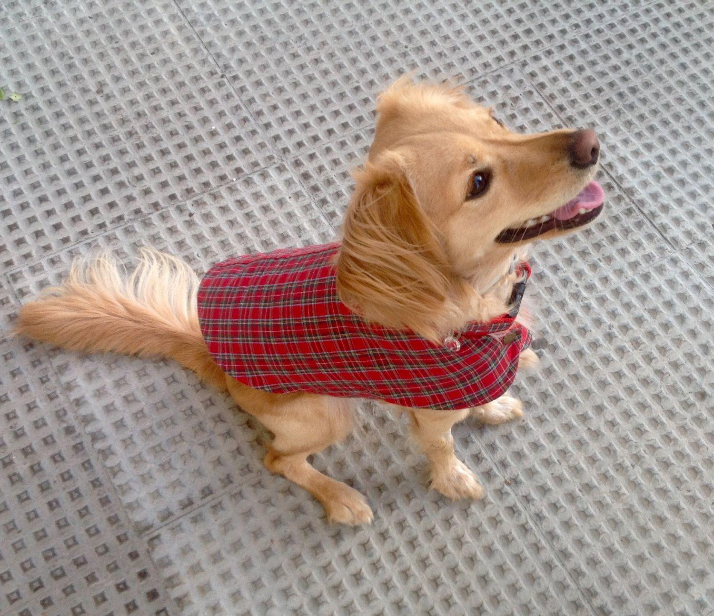 Chaqueta perro reversible, chaleco en tartán rojo, ropa perro. Diseño exclusivo de Mucka Pets. de MuckaPets en Etsy