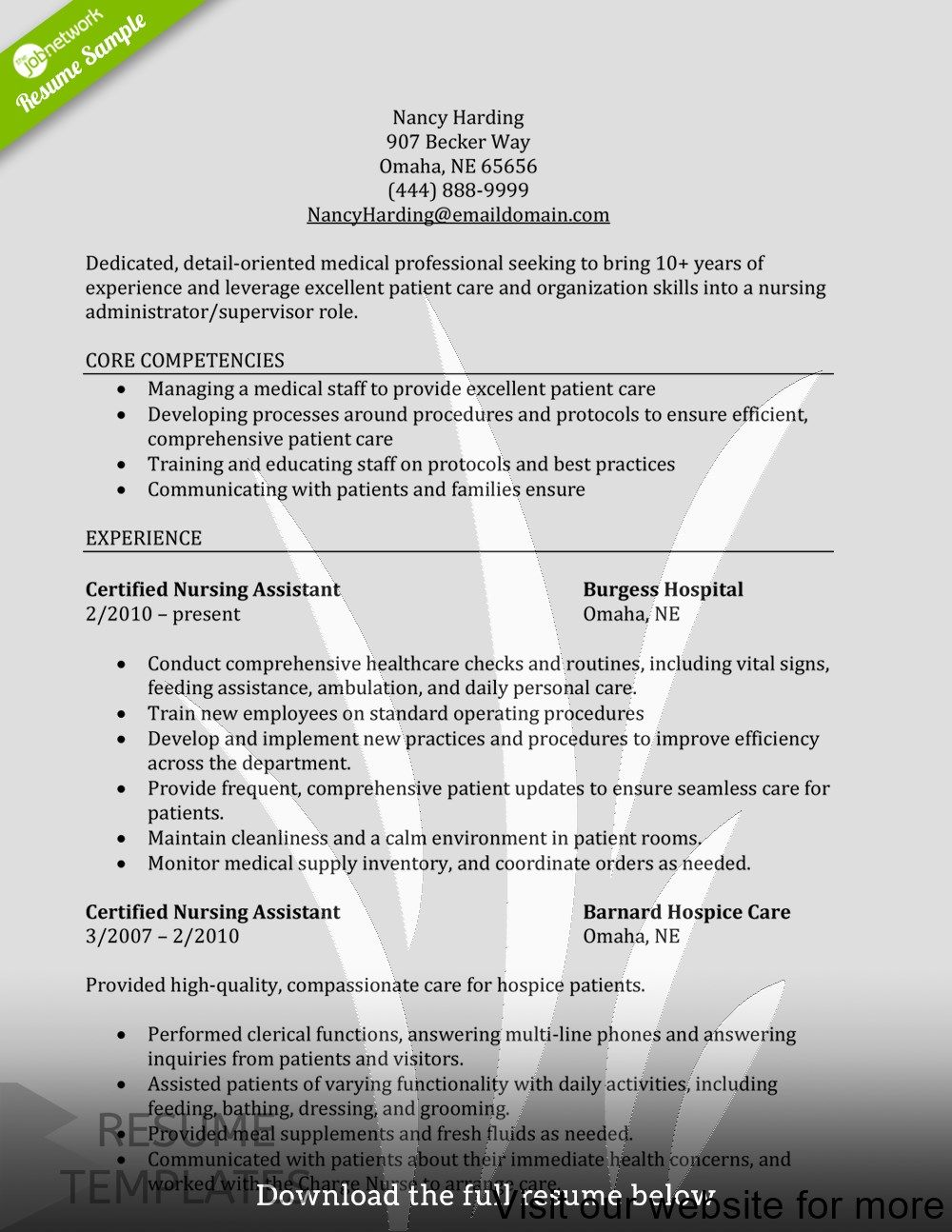 resume template best free Professional in 2020 Resume