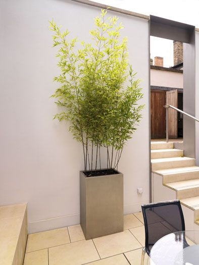 Planter fabricated from shot-peened stainless steel by John Desmond Ltd