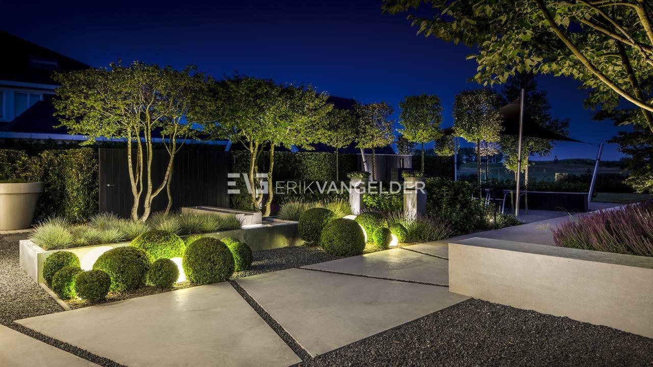 Moderne villatuin middelburg bijzondere groene tuin met moderne verlichting en bijzondere karakteristieke bomen en groenblijvende