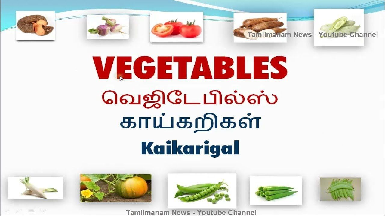 Vocabulary About Vegetables With Pictures Including Tamil Meaning