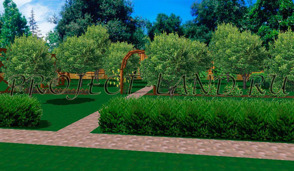 плодовый сад в ландшафтном дизайне фото