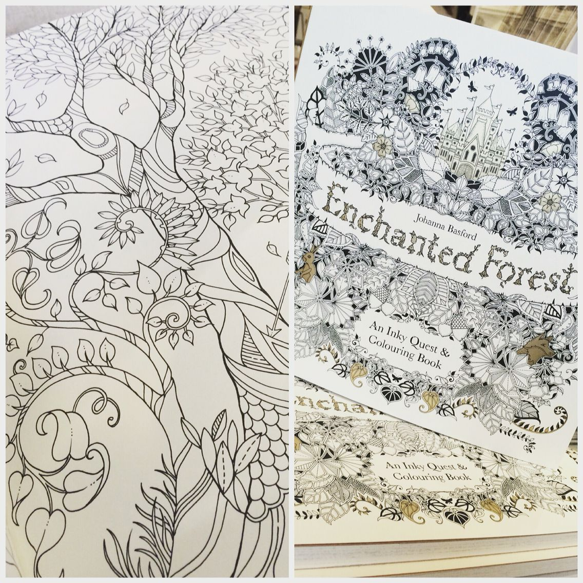Now online. The beautiful adult colouring book from the wonderfully talented illustrator Johanna Basford. The perfect stress release.