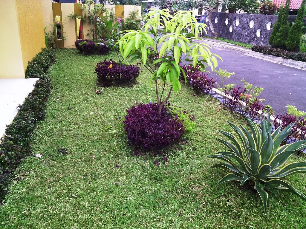 Better Home Garden Landscaping Ideas Designs Http