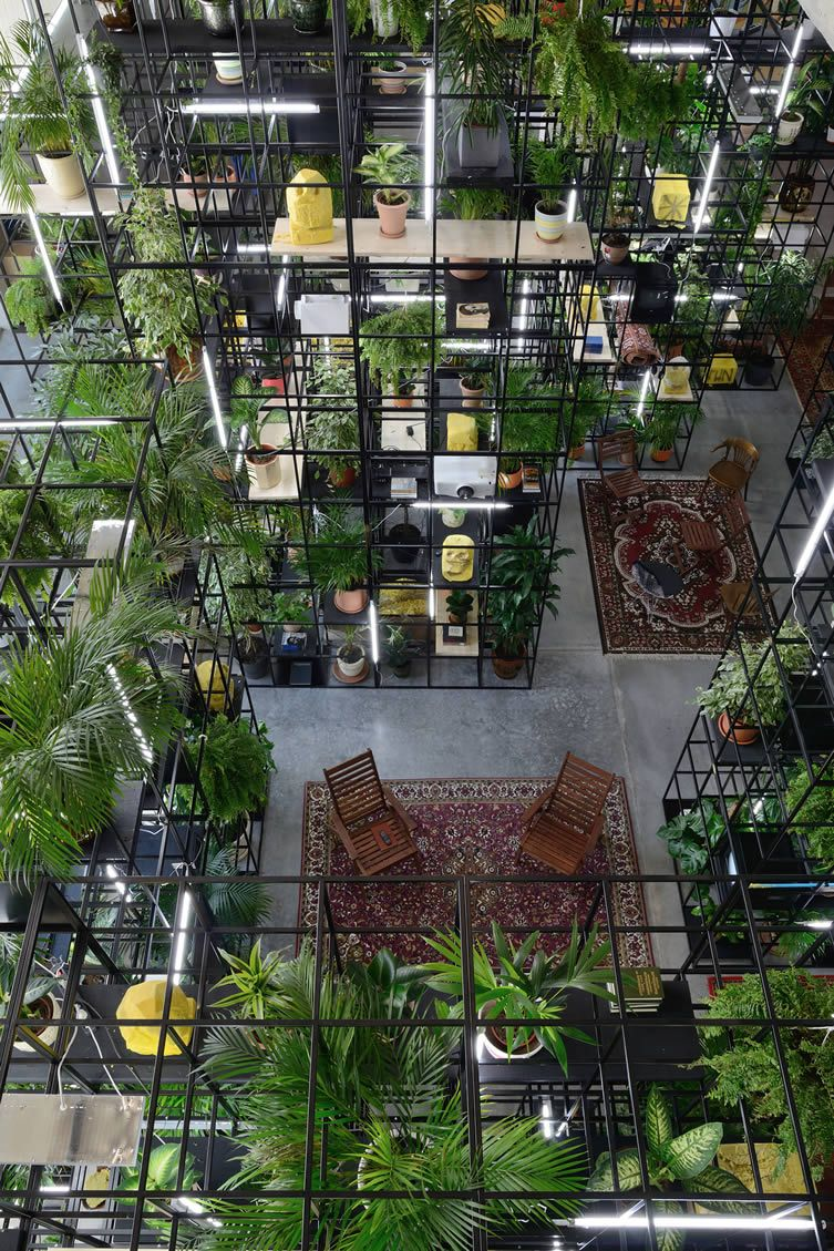 New York-based artist presents colliding cultures in Moscow with a tropical conceptual art installation...