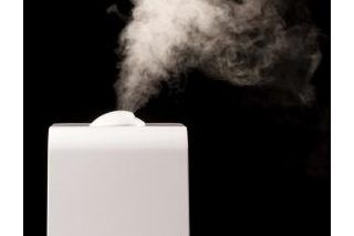 DIY Homemade Humidifier Mist Maker for Terrarium