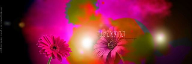 Karizma Album 12x36 Psd Wedding Background Free Download Indian Wedding Album Design Wedding Background Images Wedding Background