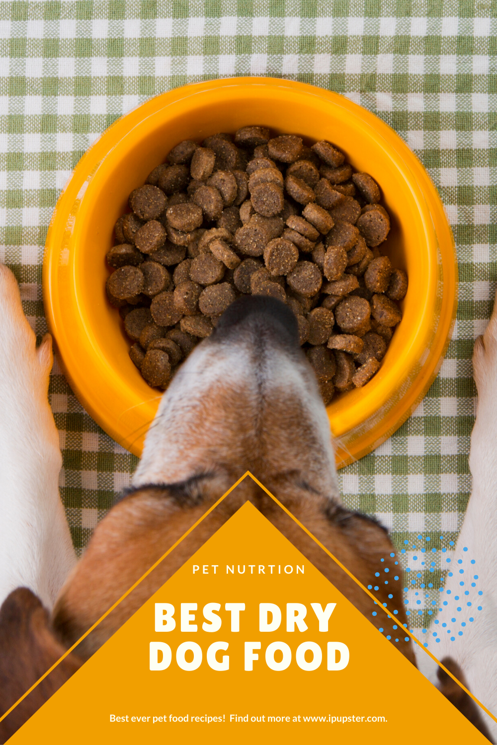 The Best Dry Dog Food For 2020 Reviews Buyer S Guide In 2020