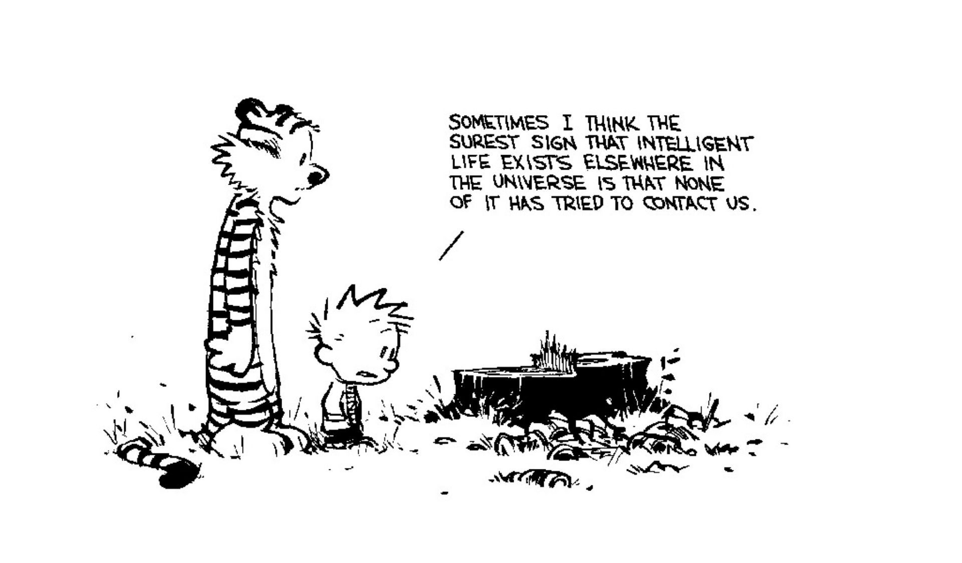 Pin by David Ives on Calvin and Hobbes Comic Strip | Calvin and hobbes  quotes, Calvin and hobbes wallpaper, Calvin and hobbes